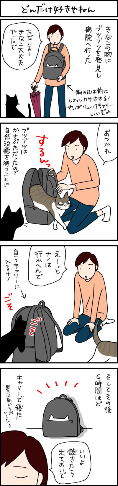 キャリーバッグが好きな猫の4コマ猫まんが