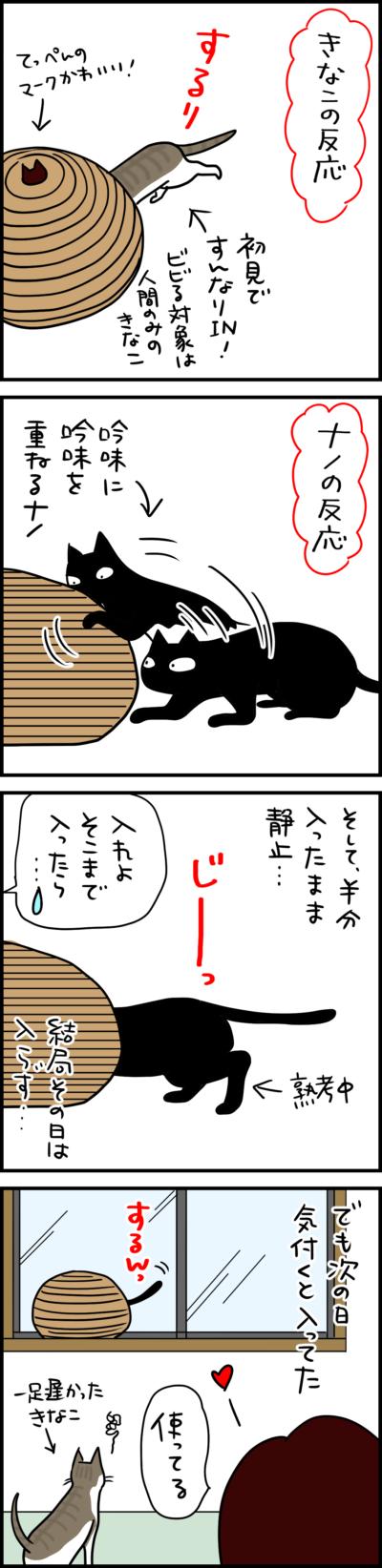 猫壱猫のくらナノときなこの場合の猫まんが