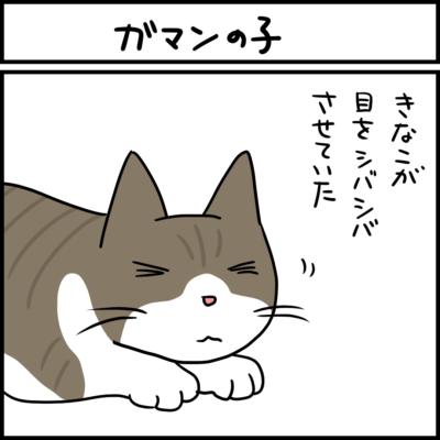 ヒーターの風に負けない猫の4コマ猫まんが