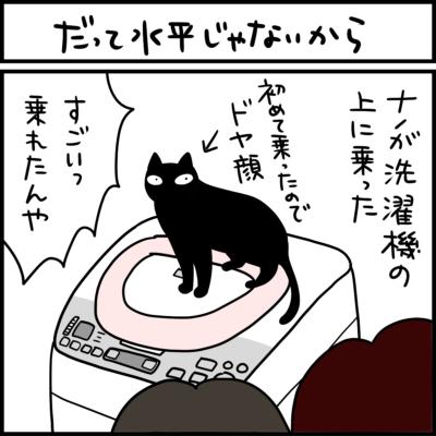 黒猫とキジシロ猫の4コマ猫まんが