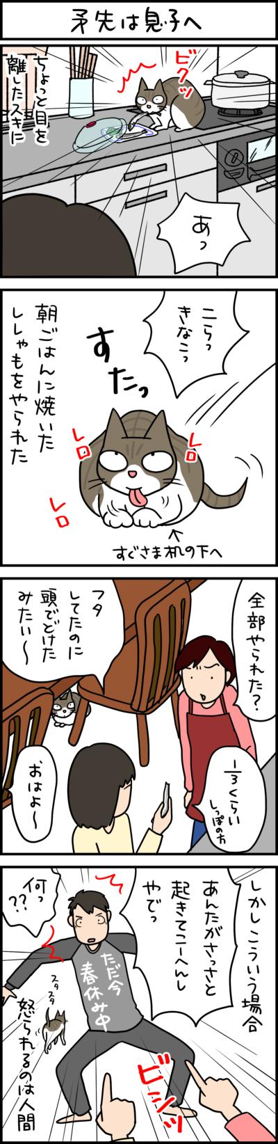 キジシロ猫の4コマ猫まんが
