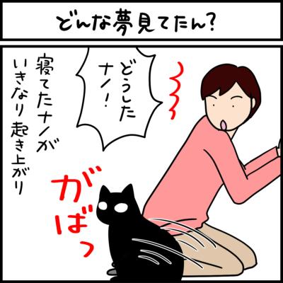 黒猫の4コマ猫まんが