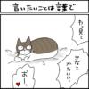 黒猫とキジシロ猫の4コマ漫画