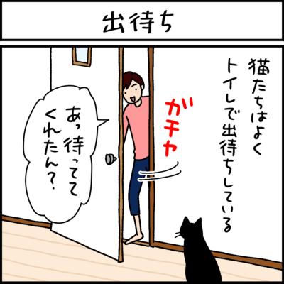 黒猫とキジシロ猫の4コマ猫漫画