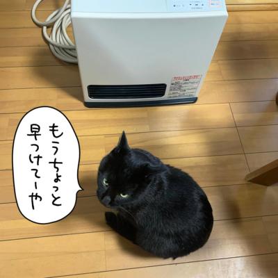 ヒーターの前の黒猫ナノ