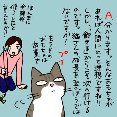 猫に関するQ&A漫画