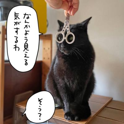 猫壱ストレスなくスパッと切れる猫用爪切りとナノ