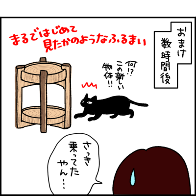 黒猫ナノとキジシロ猫きなこの4コマ猫漫画