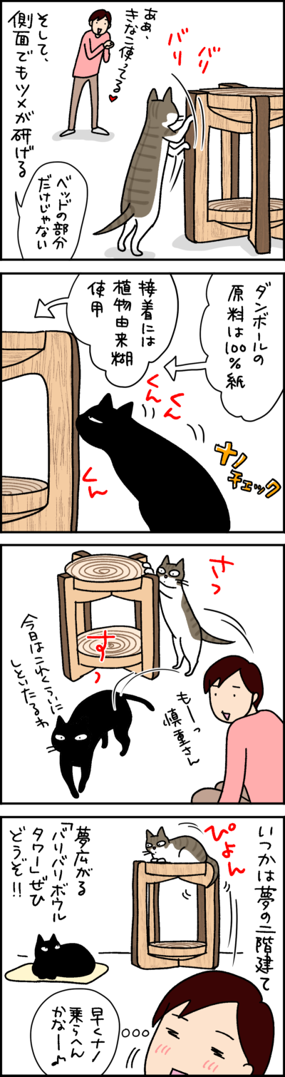 猫壱バリバリボウルタワーのPR